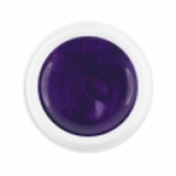Gel color 2073 grape